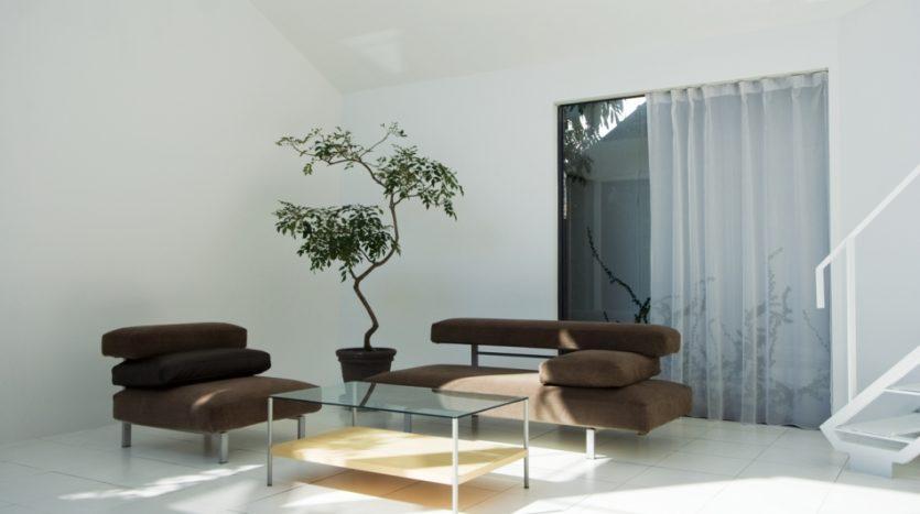 庭付きの中野の豪邸 一軒家ハウススタジオ|ライトボックススタジオ中野