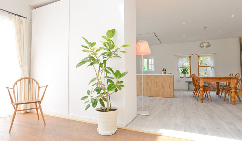 都内最大級の600㎡ ナチュラルな雰囲気の一軒家|STUDIO JILL A studio